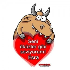 erdil_yasarogli_okuz_gibi_seviyorum_kupa_bardak